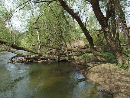Wasserpolitik –  Keine prickelnden Aussichten!